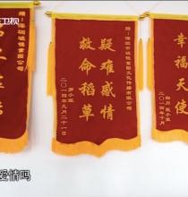 广东卫视《社会纵横》专访
